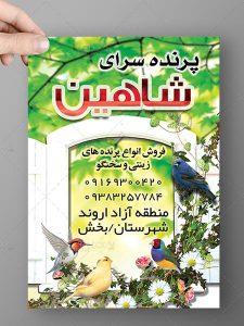 طرح لایه باز تراکت تبلیغاتی پرنده فروشی سایز A4 رنگی فایل PSD