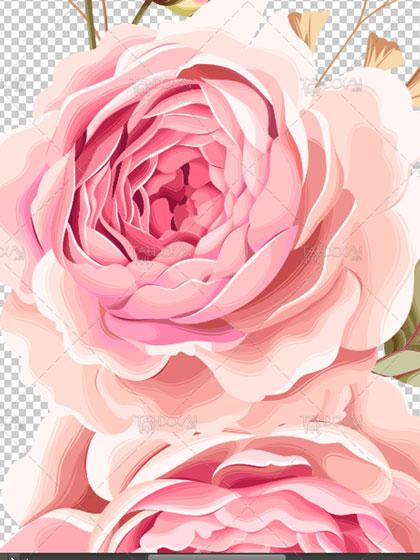 دانلود تصویر فریم گلدار